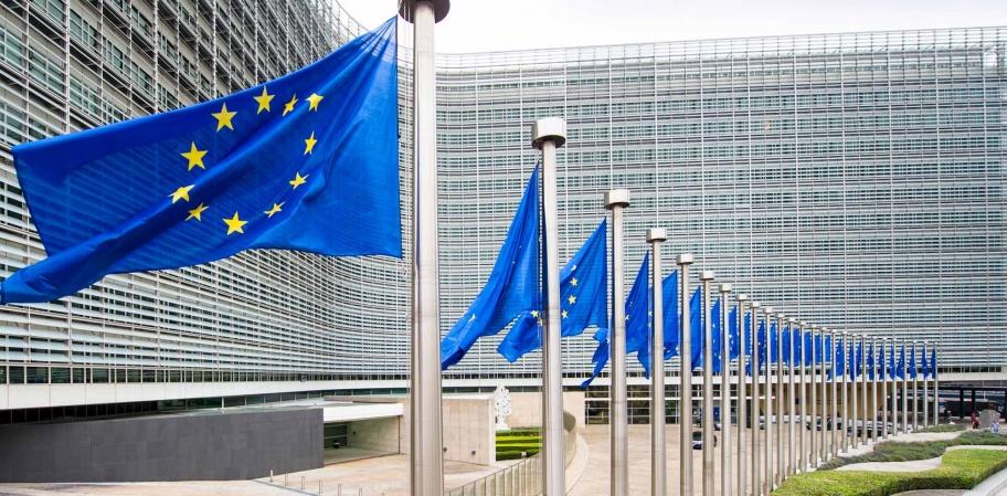 La CE publica un reglamento con excepciones sobre los controles administrativos y sobre el terreno, aplicables también para LEADER title=